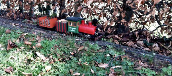01 Porter mit 101 Rungenwagen unter Dampf.